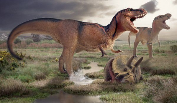 a look at the theories of the extinction of the dinosaurs The alvarez hypothesis suggests the mass extinction of the dinosaurs was caused by an impact of a large meteorite on the earth, 65 million years ago some geologists have suggested the chicxulub crater, a site along the north-east coast of mexico's yucatán peninsula as the impact zone.